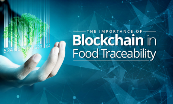 Reasons Behind World Prefers Blockchain in Food Traceability